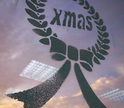 平安夜.聖誕味.尋找聖誕樹