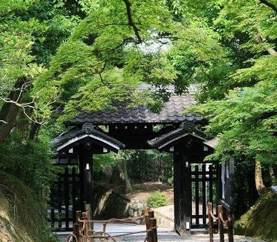 [旅行地圖] 京都.常寂光寺的綠意