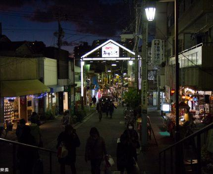 [富士五湖+東京] 東京。谷根千散策。沒有貓坐擡只好一直吃了