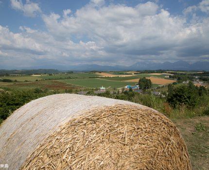 [北海道夏之旅] 美瑛。景觀之路的田園景色