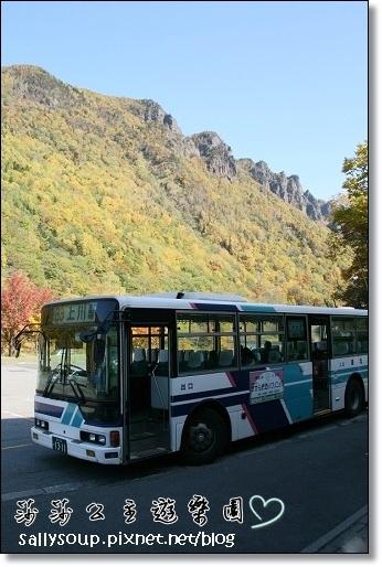 008. 巴士停在滿山楓紅中