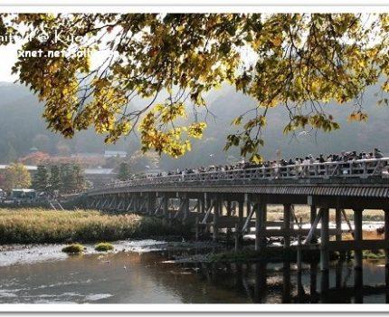 [2007 楓京都] 嵐山.午後閒晃渡月橋.抹茶霜淇淋~