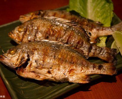 君悅酒店。彩IRODORI。開放式廚房的精緻日式料理自助餐~
