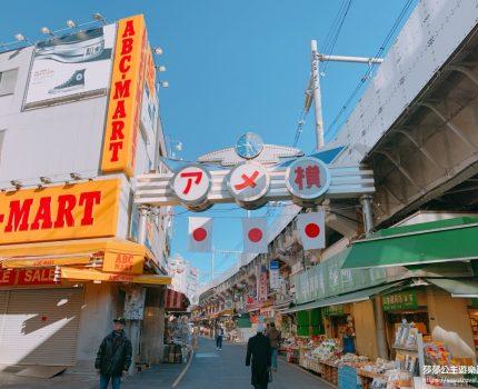 在東京旅行– 上野、新宿和銀座